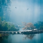 The Gorge - Launceston