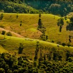 Land folds